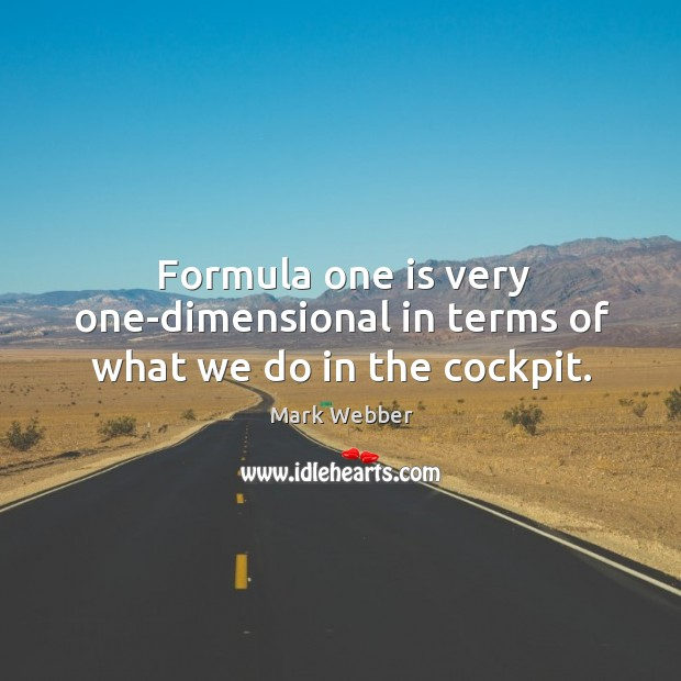 Formula one is very one-dimensional in terms of what we do in the cockpit. Image