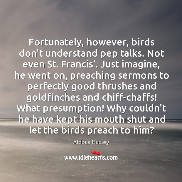 Fortunately, however, birds don't understand pep talks. Not even St. Francis'. Just Image