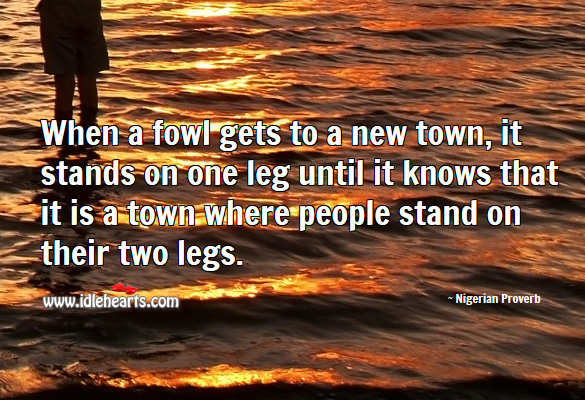 When a fowl gets to a new town, it stands on one leg until it knows that it is a town where people stand on their two legs. Nigerian Proverbs Image