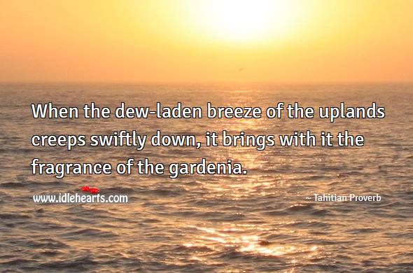 When the dew-laden breeze of the uplands creeps swiftly down, it brings with it the fragrance of the gardenia. Tahitian Proverbs Image