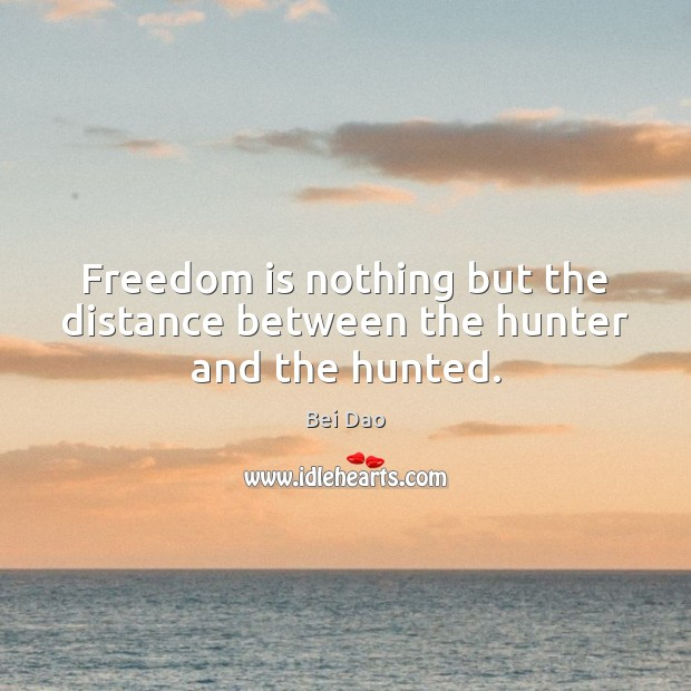 Image, Freedom is nothing but the distance between the hunter and the hunted.