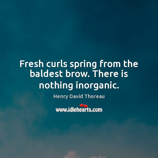 Fresh curls spring from the baldest brow. There is nothing inorganic. Henry David Thoreau Picture Quote