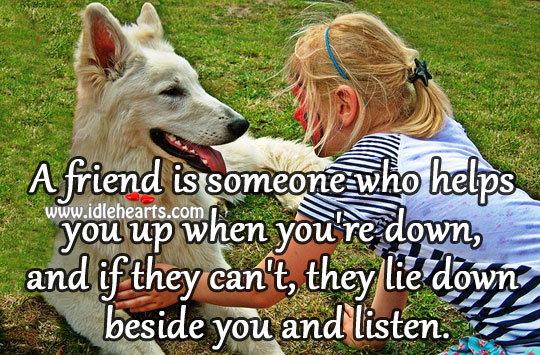 Image about A friend is someone who helps you up