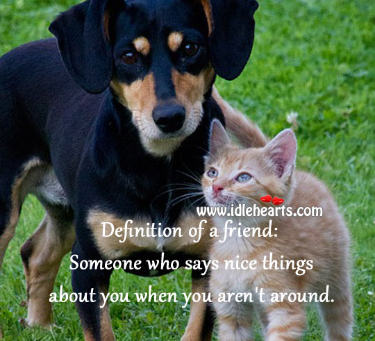 Image, Definition of a friend