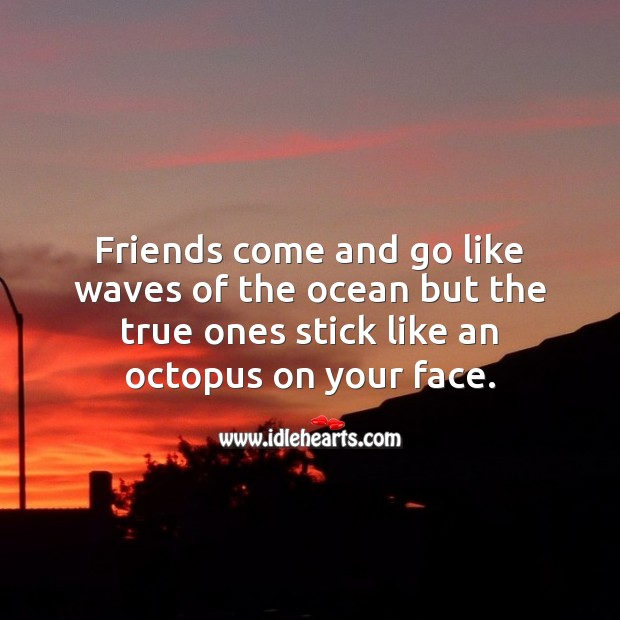 Friends come and go like waves of the ocean but the true ones stick Funny Quotes Image