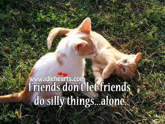 Friends Don't Let Friends Do Silly Things…Alone.