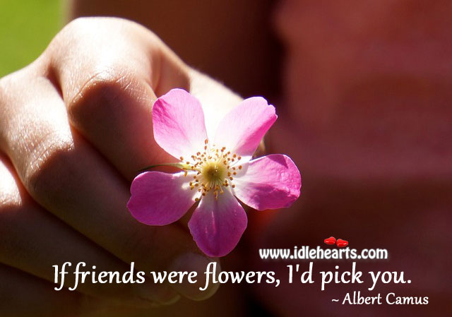 If friends were flowers, i'd pick you. Albert Camus Picture Quote