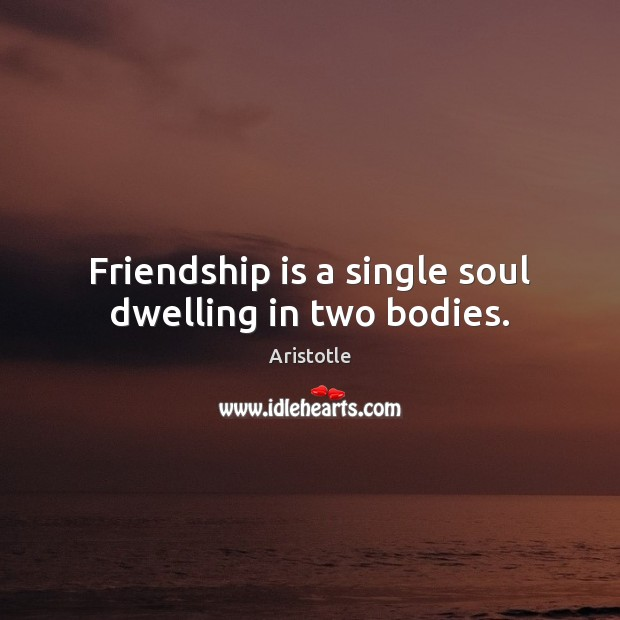 Image, Friendship is a single soul dwelling in two bodies.