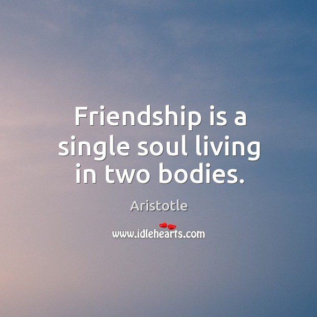 Image, Friendship is a single soul living in two bodies.
