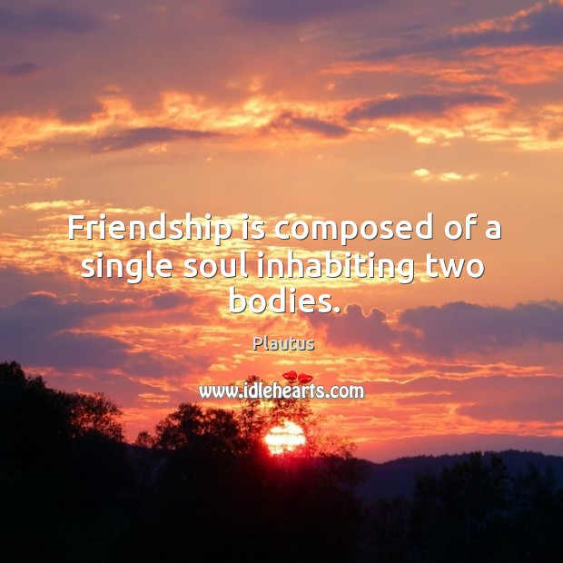 Image about Friendship is composed of a single soul inhabiting two bodies.