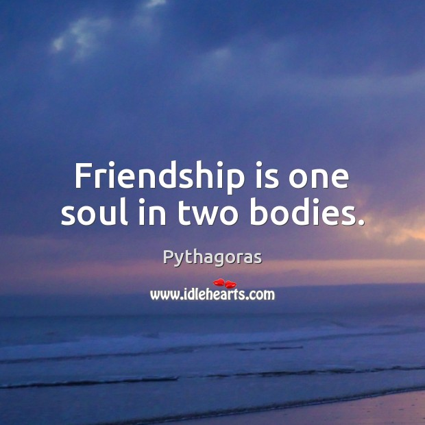Image, Friendship is one soul in two bodies.