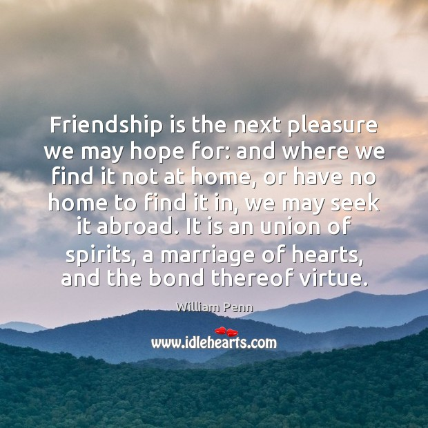 Image, Friendship is the next pleasure we may hope for: and where we