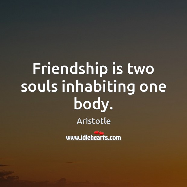 Image, Friendship is two souls inhabiting one body.