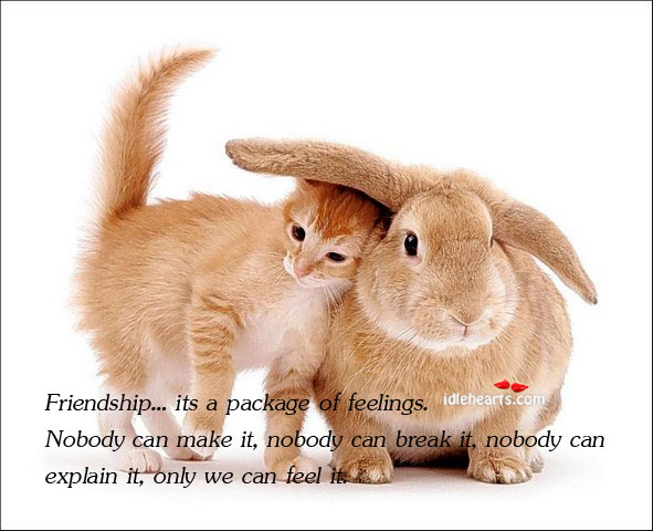 Friendship… Its A Package Of Feelings. Nobody Can Make It…
