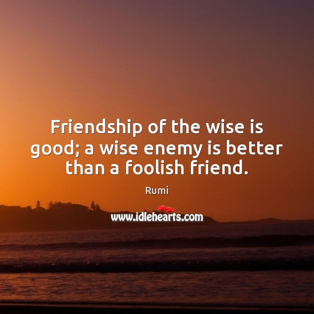 Image, Friendship of the wise is good; a wise enemy is better than a foolish friend.