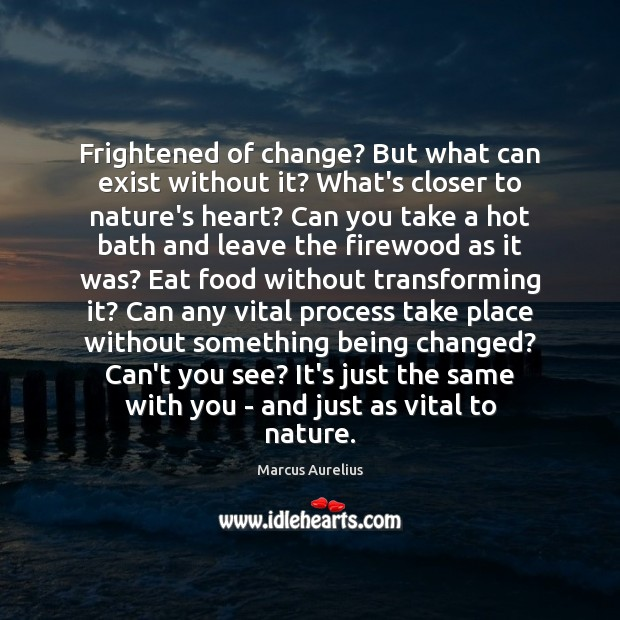 Image, Frightened of change? But what can exist without it? What's closer to