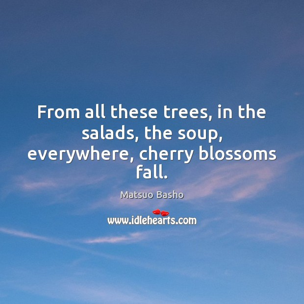 From all these trees, in the salads, the soup, everywhere, cherry blossoms fall. Matsuo Basho Picture Quote