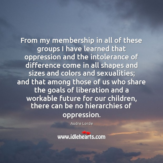 From my membership in all of these groups I have learned that Audre Lorde Picture Quote