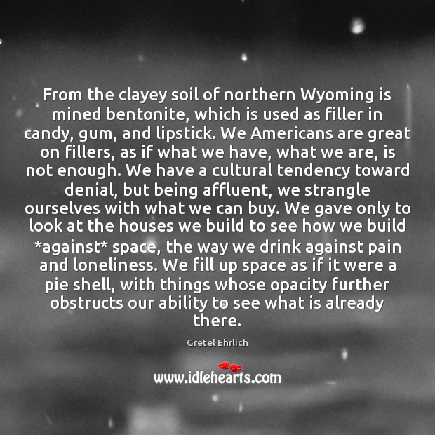 From the clayey soil of northern Wyoming is mined bentonite, which is Gretel Ehrlich Picture Quote