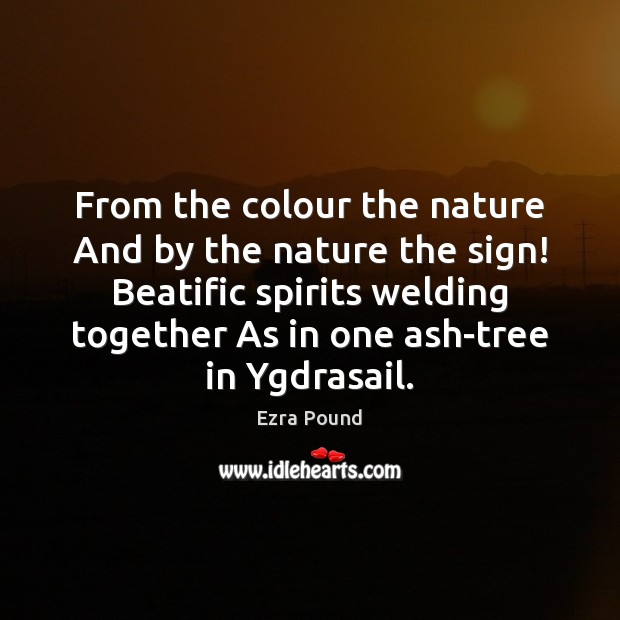 From the colour the nature And by the nature the sign! Beatific Image