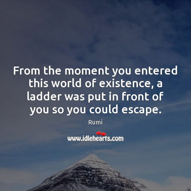 From the moment you entered this world of existence, a ladder was Rumi Picture Quote