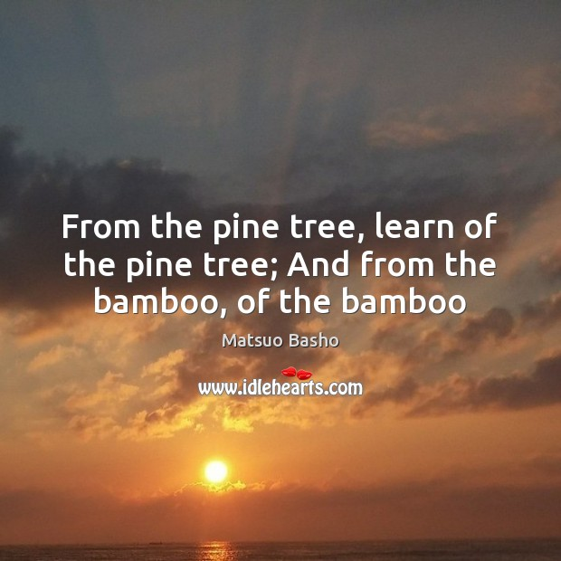 From the pine tree, learn of the pine tree; And from the bamboo, of the bamboo Matsuo Basho Picture Quote