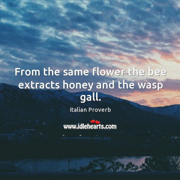 Image, From the same flower the bee extracts honey and the wasp gall.
