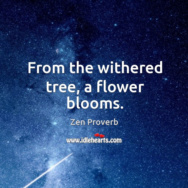 From the withered tree, a flower blooms. Zen Proverbs Image