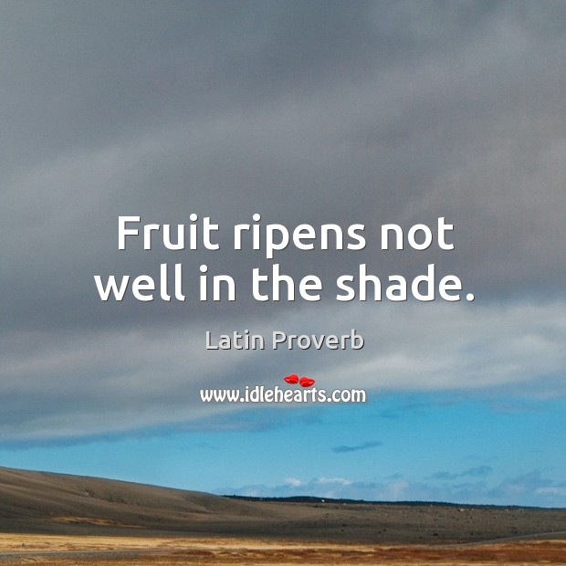 Image, Fruit ripens not well in the shade.