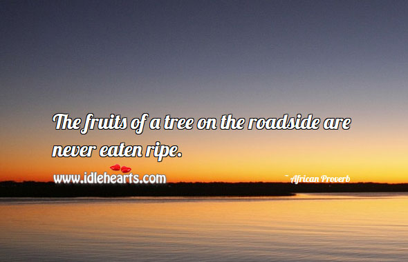 Image, The fruits of a tree on the roadside are never eaten ripe.