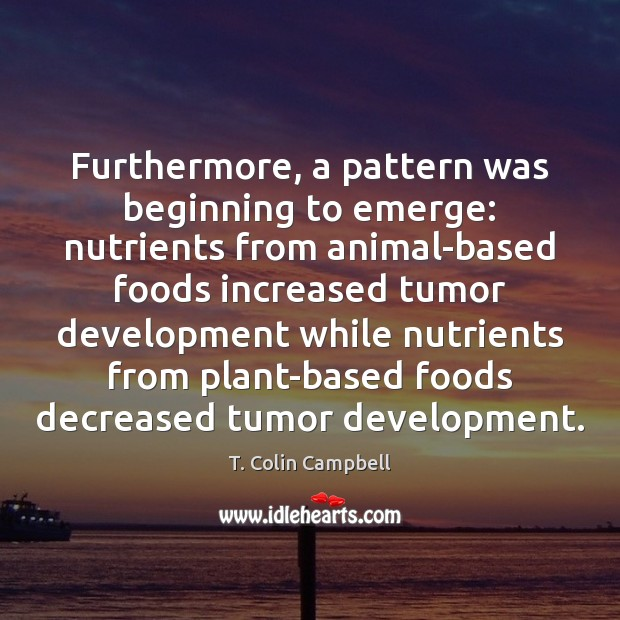 Image, Furthermore, a pattern was beginning to emerge: nutrients from animal-based foods increased