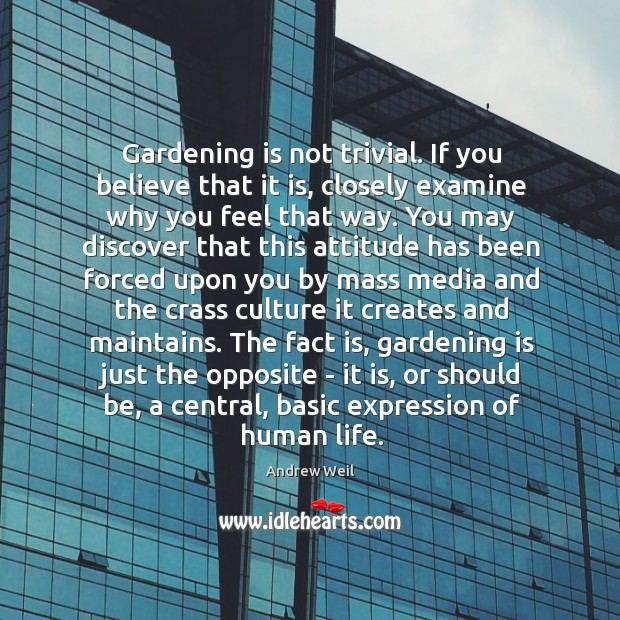 Gardening is not trivial. If you believe that it is, closely examine Gardening Quotes Image