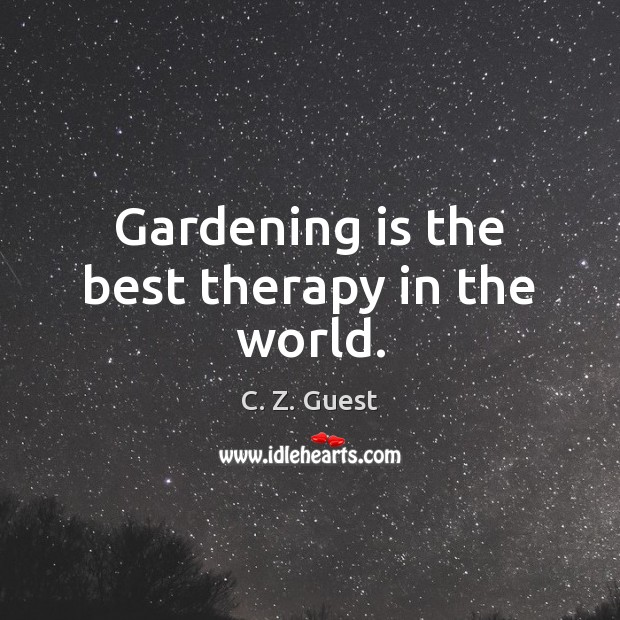 Gardening is the best therapy in the world. Image