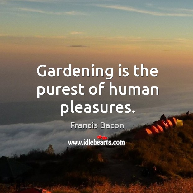 Gardening is the purest of human pleasures. Image