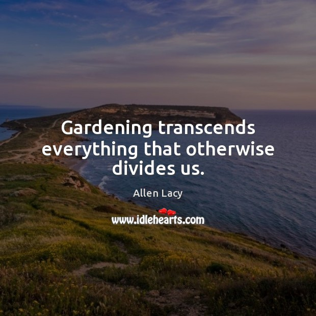 Gardening transcends everything that otherwise divides us. Allen Lacy Picture Quote