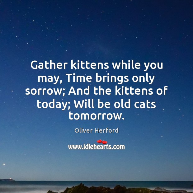 Gather kittens while you may, Time brings only sorrow; And the kittens Oliver Herford Picture Quote