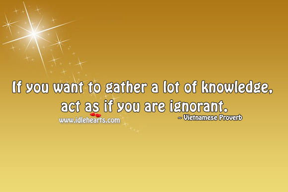 Image, If you want to gather a lot of knowledge, act as if you are ignorant.