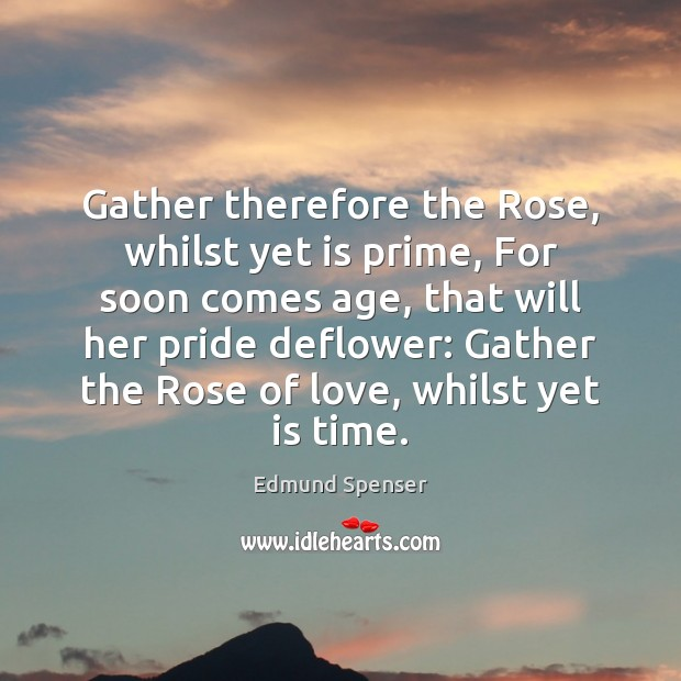 Gather therefore the Rose, whilst yet is prime, For soon comes age, Edmund Spenser Picture Quote