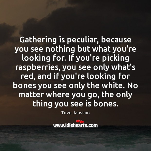 Gathering is peculiar, because you see nothing but what you're looking for. Tove Jansson Picture Quote