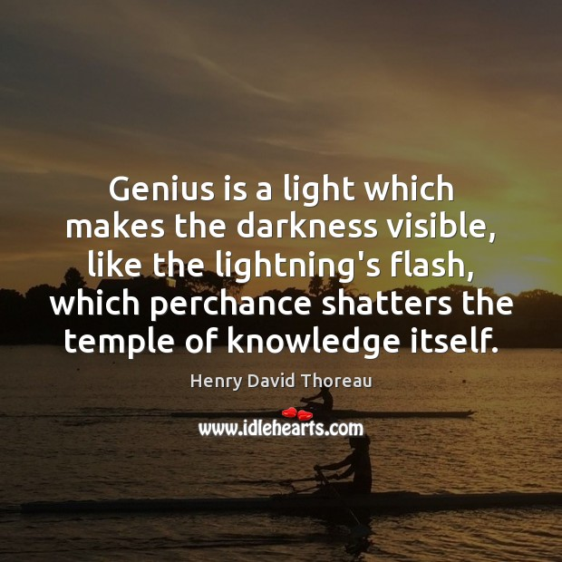 Image, Genius is a light which makes the darkness visible, like the lightning's