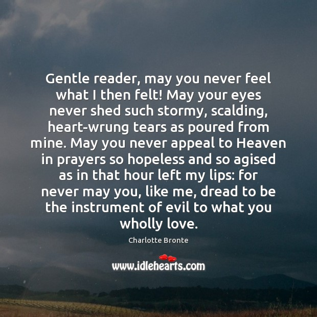 Gentle reader, may you never feel what I then felt! May your Charlotte Bronte Picture Quote