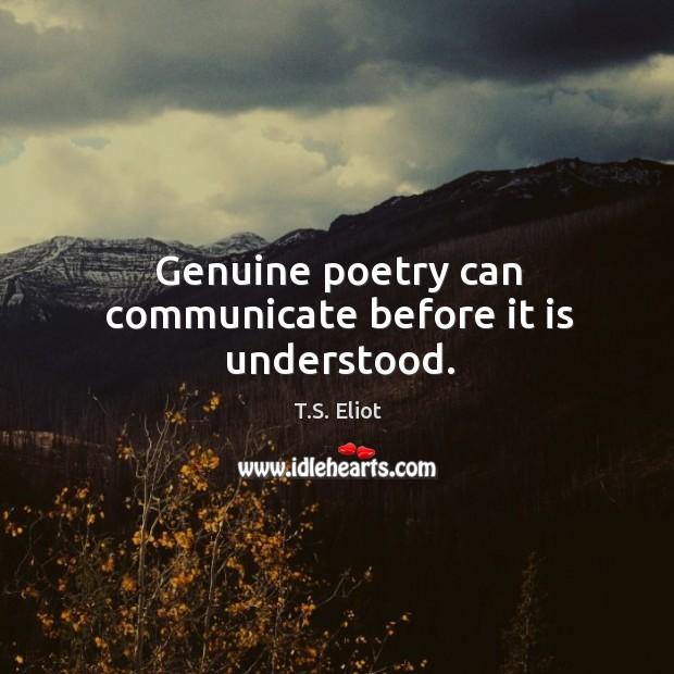 Image, Genuine poetry can communicate before it is understood.