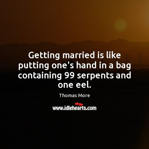 Getting married is like putting one's hand in a bag containing 99 serpents and one eel. Thomas More Picture Quote
