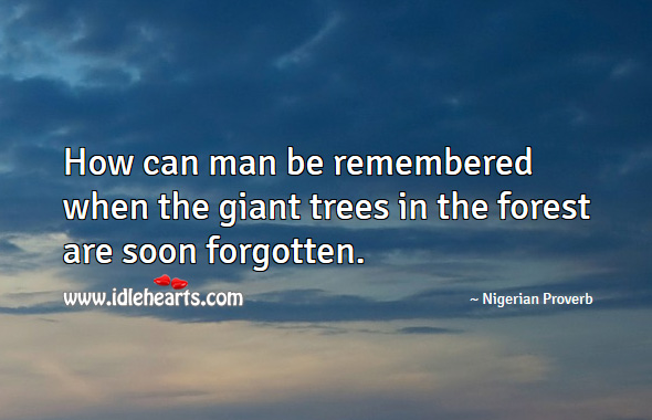 How can man be remembered when the giant trees in the forest are soon forgotten. Nigerian Proverbs Image