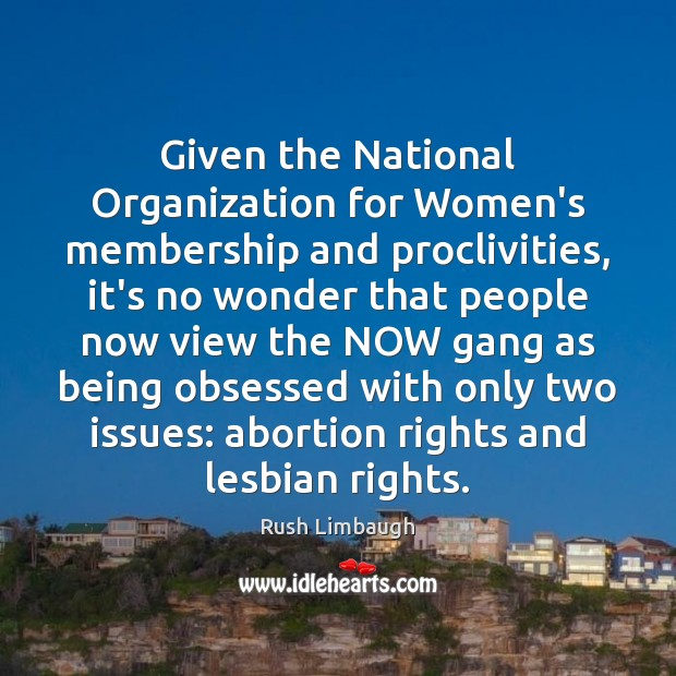 Image, Given the National Organization for Women's membership and proclivities, it's no wonder
