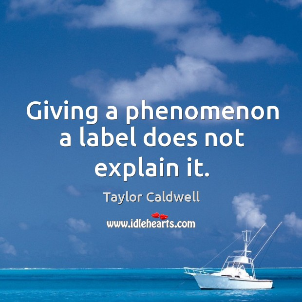 Giving a phenomenon a label does not explain it. Taylor Caldwell Picture Quote