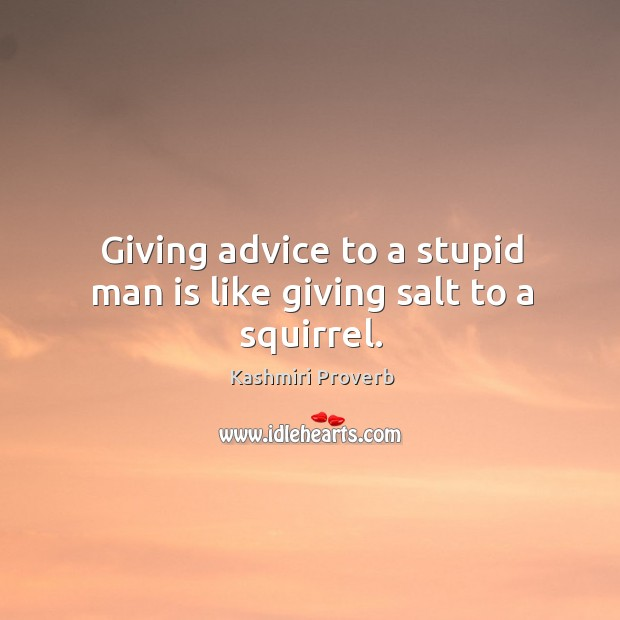 Giving advice to a stupid man is like giving salt to a squirrel. Kashmiri Proverbs Image