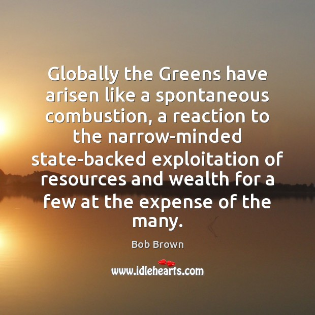 Globally the Greens have arisen like a spontaneous combustion, a reaction to Image