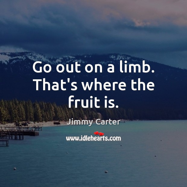 Go out on a limb. That's where the fruit is. Jimmy Carter Picture Quote