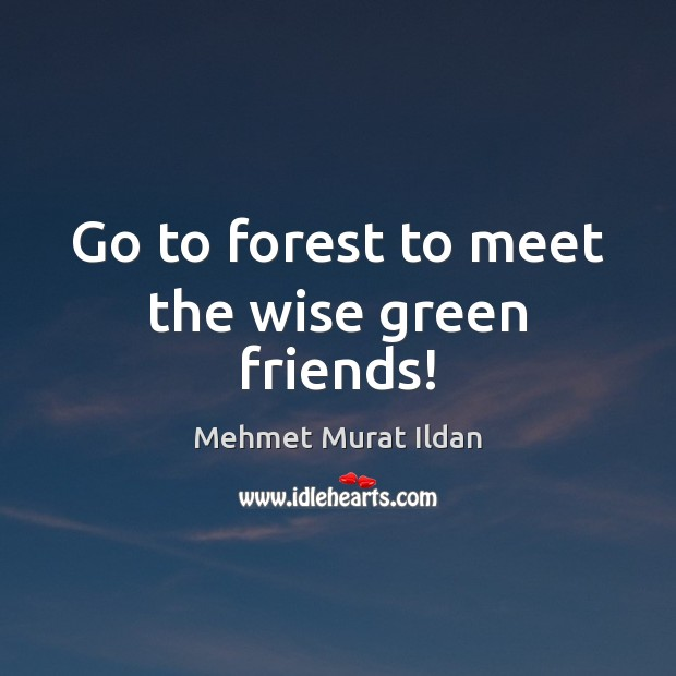 Image, Go to forest to meet the wise green friends!